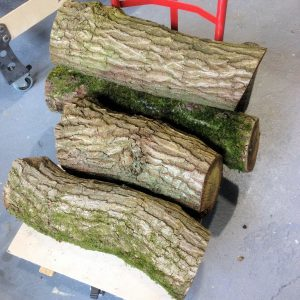 Oak logs ready for making into boot and coat racks